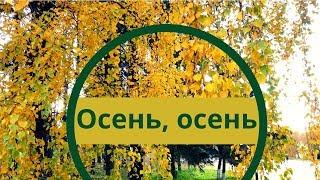 Осень золотая. Разноцветная осень. Золотой листопад.