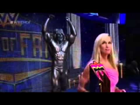WWE Hall of Fame 2015 28 March 2015. Ultimate War