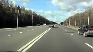 Traffic accident   駝鹿衝撞汽車 車禍