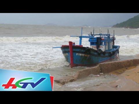 Chìm Hàng Chục Tàu ở Bình Định, Khánh Hòa   ĐƯỜNG DÂY NÓNG ONLINE - 6/11/2017