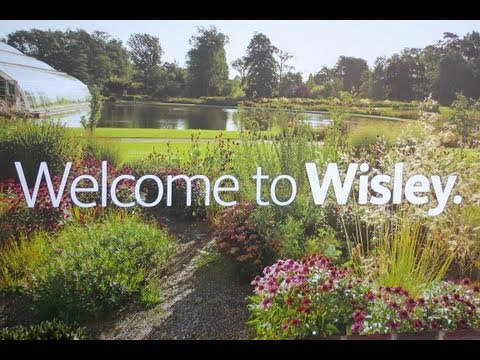 WALKING AROUND WISLEY - FLAGSHIP GARDEN of THE ROYAL HORTICULTURAL SOCIETY