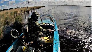 Рыбалка оз Чаны Хороший улов в первый выход Разведка удалась Окунь Судак Щука Видео 2021