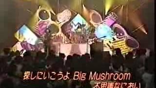 Shonen Knife Brown Mushrooms.
