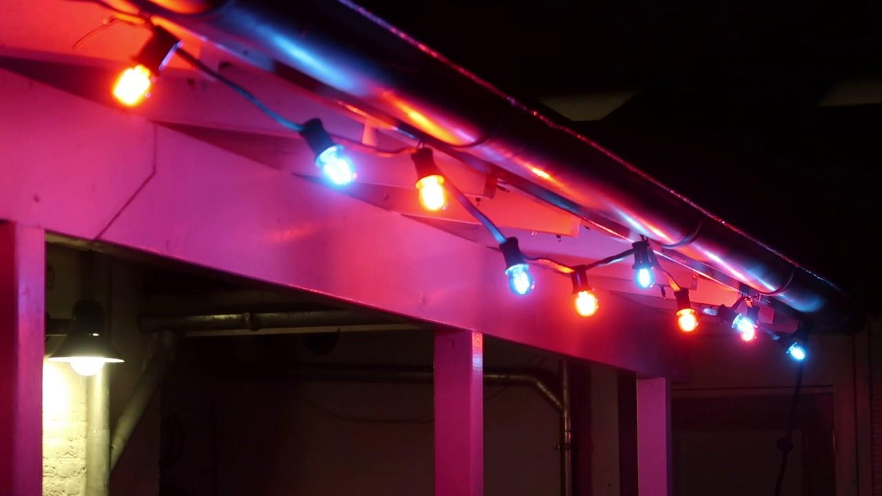 Rode En Blauwe Led Lampen Feestverlichting Kerstverlichting Buiten