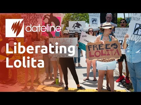 Free The Whales - Liberating Lolita