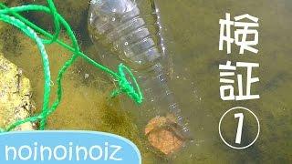 ペットボトル仕掛け2でナマズ目ギバチ獲れるか実験(設置~回収) Bottle Trap For Insects catfish thumbnail