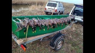 Охота на утку в Краснодарском крае в Декабре 2017