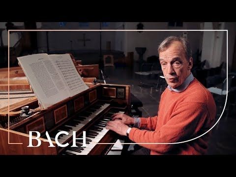 Mortensen On Bach Orchestral Suite No. 4 In D Major BWV 1069 | Netherlands Bach Society