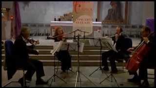 Gaetano Donizetti : primo movimento dal quartetto in Re maggiore Nr° 4