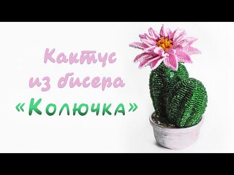 Мк из бисера кактус
