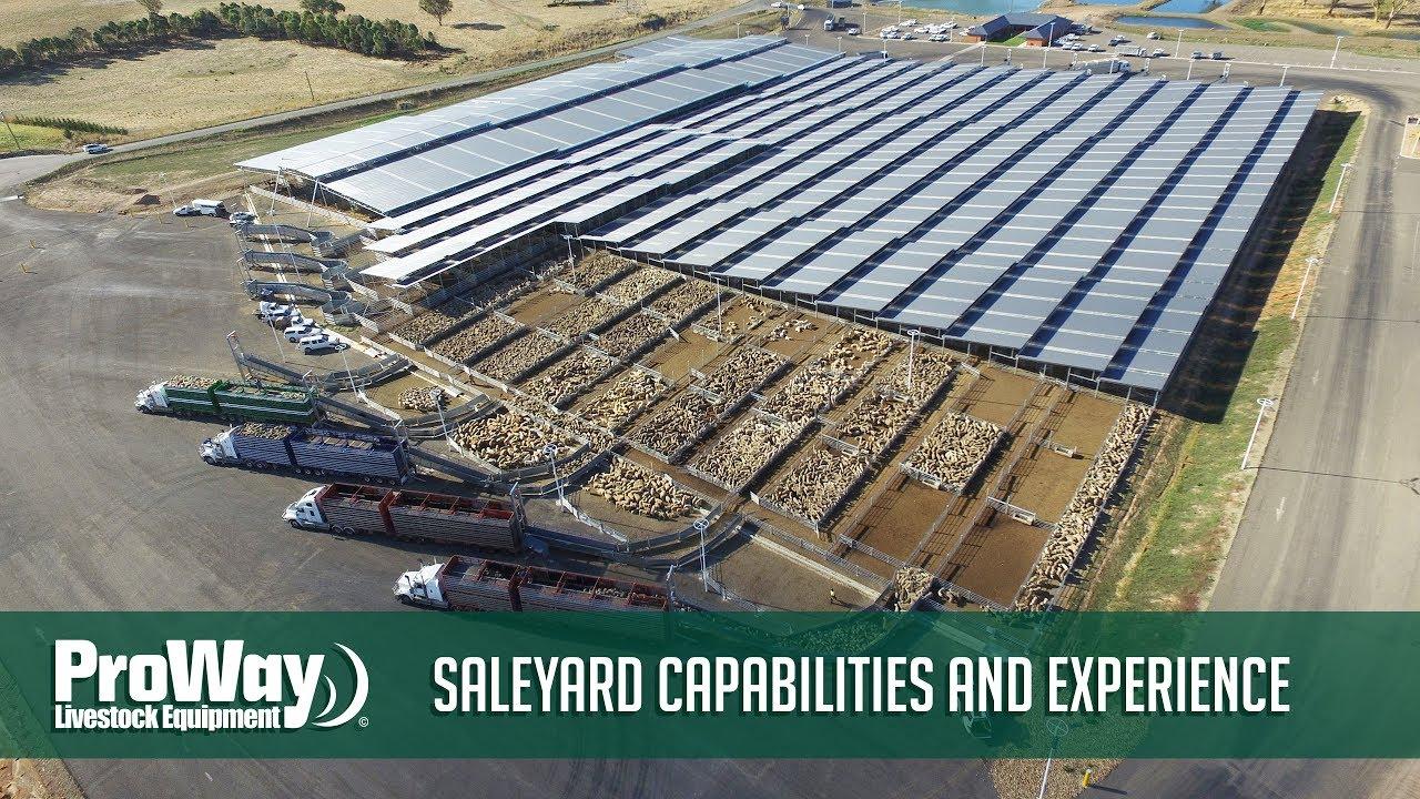 Saleyard Capabilities And Experience