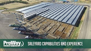 ProWay  - Saleyard Capabilities and Experience
