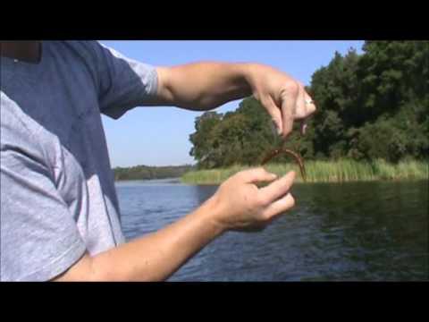 Bass fishing houston county lake youtube for Lake houston fishing