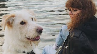 Лиза Громова - глупая скучная собака