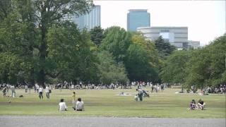 Tokyo is Genki! Come See Shinjuku Gyoen Park
