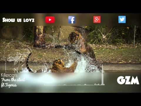 Killercats ft.Tigress - From the start
