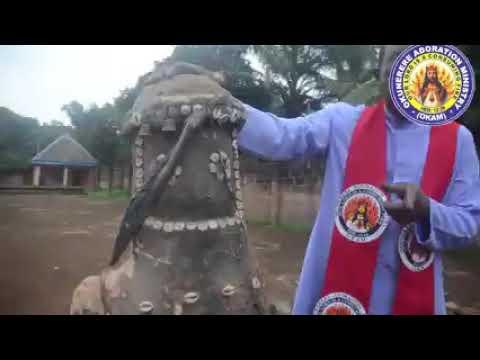 Download okunerere fr Paul obayi
