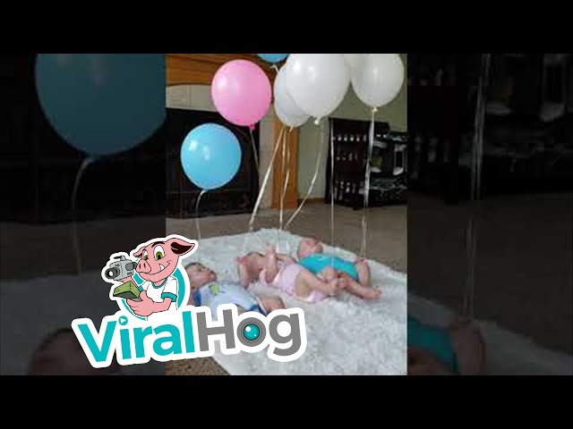 Triplets Playing with Balloons || ViralHog