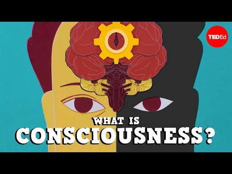 What is consciousness? - Michael S. A. Graziano on YouTube