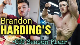 Brandon Harding - UPDATE - His New Off Season Plan Explained!!!
