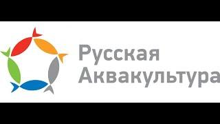 акции Русская Аквакультура