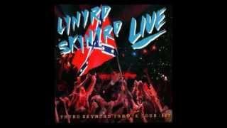 Lynyrd Skynyrd featuring Steve Morse (Deep Purple, Kansas etc.) pla...