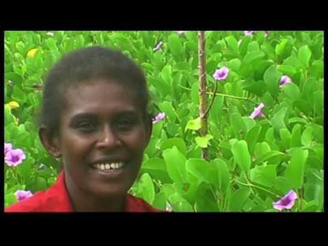 Solomon Islands, Rannongga Sing Along gospel music