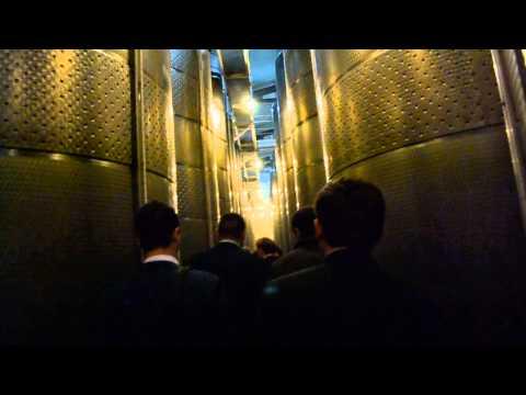 Vizita d-lui Vlad Filat a întreprinderei Agrovin Bulboaca 21.10.2014