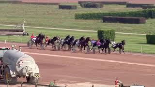 Vidéo de la course PMU PRIX DE SAIGNELEGIER