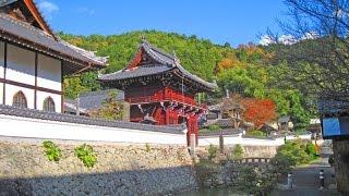 興禅寺 [春日局生誕の地]  HDR As100V
