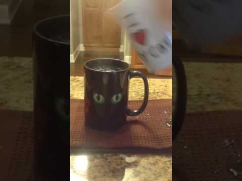 Black peeking cat cup