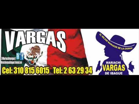 No vuelvo a molestarte (Mariachi Vargas de Ibagué).