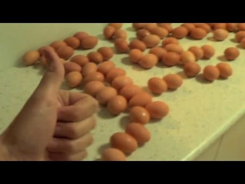 How To HowToBasic