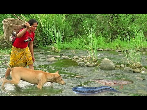 survival-in-river---two-big-fish-caught-in-a-river-by-woman--cooking-and-eating-delicious-with-dogs.