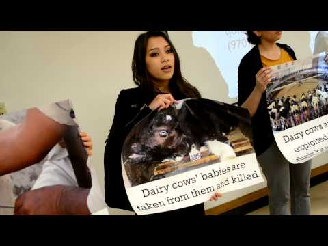 ANIMAL RIGHTS ACTIVISTS DISRUPT DAIRY INDUSTRY INFO SESSION - UC BERKELEY
