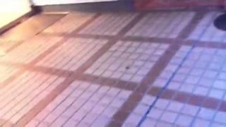 Tokyo quake damage 東京 地震