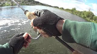 Отчёт по форелевой рыбалке на Стрелецком  ручье