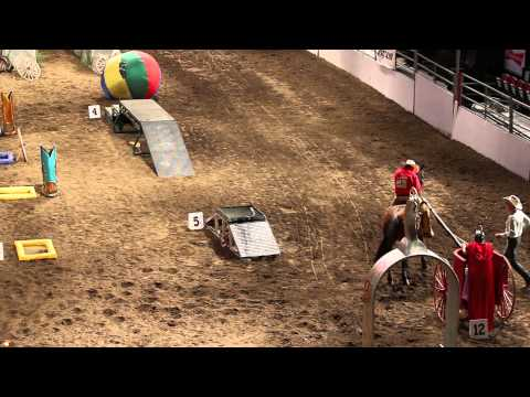 2015 Calgary Stampede Cowboy Up Challenge Champion - Runt Rageth