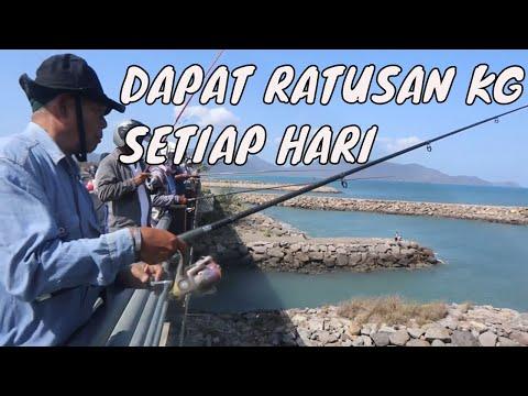 gokil!!-panen-ikan-dari-jembatan-ulee-lheue-banda-aceh---mancing-tradisional-aceh