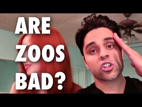ARE ZOOS BAD? (vlog: Sunday Stories Vol 21) Ray William Johnson