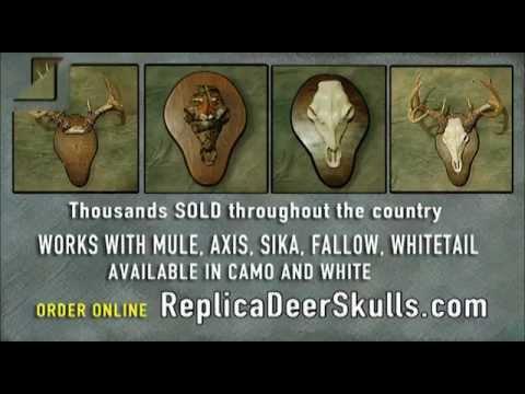 Coyt Jordan's new Replica Deer Skull Mount