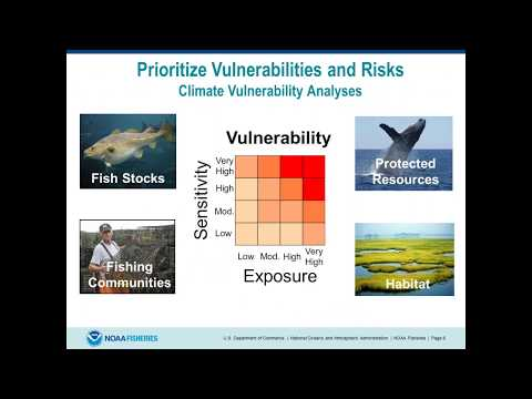 Overview Of The EBFM Implementation Plans From NOAA Fisheries Headquarters And The Regions