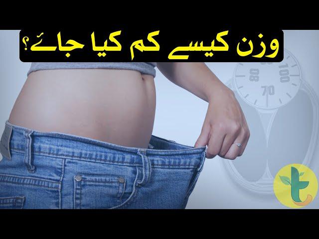 Calories Deficit Diet Measurement for Weight Loss in Urdu by Dietitian Amina Bangash - Tabib.pk