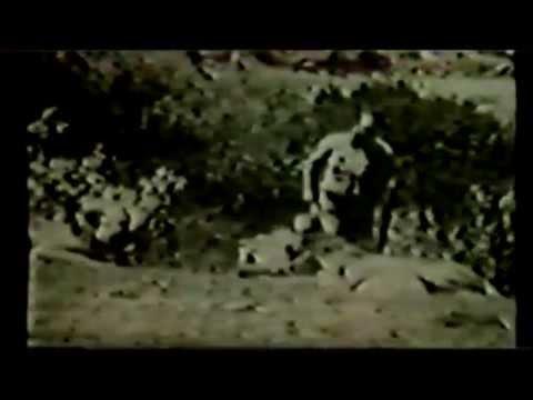 Kid Nichols 1929-30 African Safari