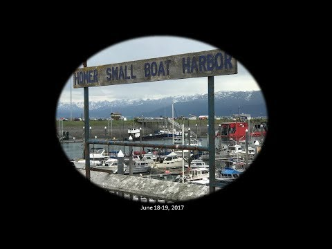 Homer Alaska Fishing June 18-19, 2017