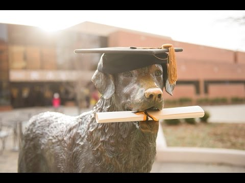 UMBC Winter 2016 Graduate Commencement Ceremony