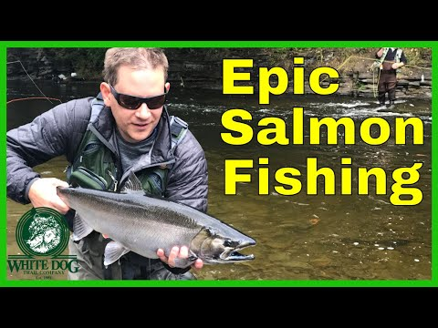 Salmon River, NY Epic Run 2017 - Fly Fishing for Biting Salmon