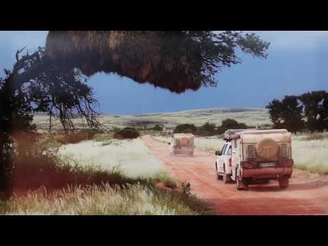 Overview of Clements Worldwide - Global Insurance Provider.mp4
