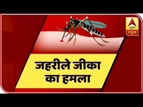55 Cases Of Zika Virus Confirmed In Jaipur | ABP News