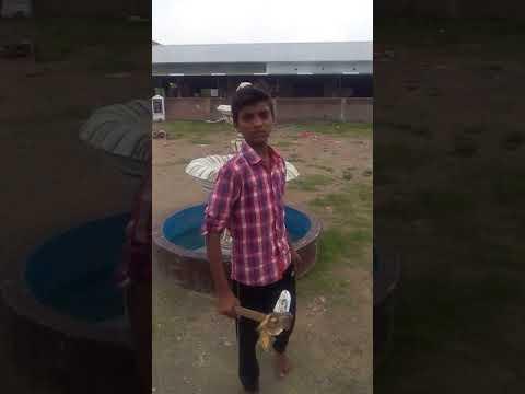 Enkoor School Student Kilikili Dialogue | Akhil | kalakeya| Baahubali